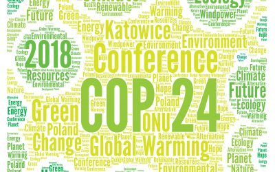 The Climate Report, COP24, and Why it Matters